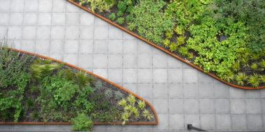Daktuin Eindhoven ontwerp 'Natuur bij huis'