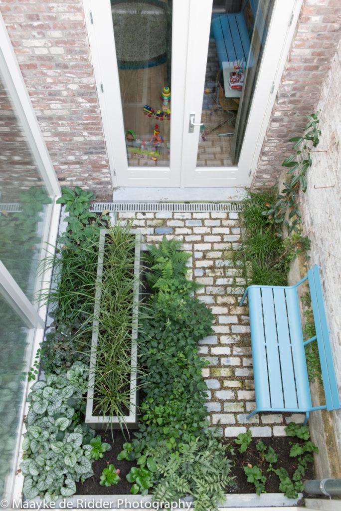 tuinontwerp patio natuurbijhuis (foto ©Maayke de Ridder)