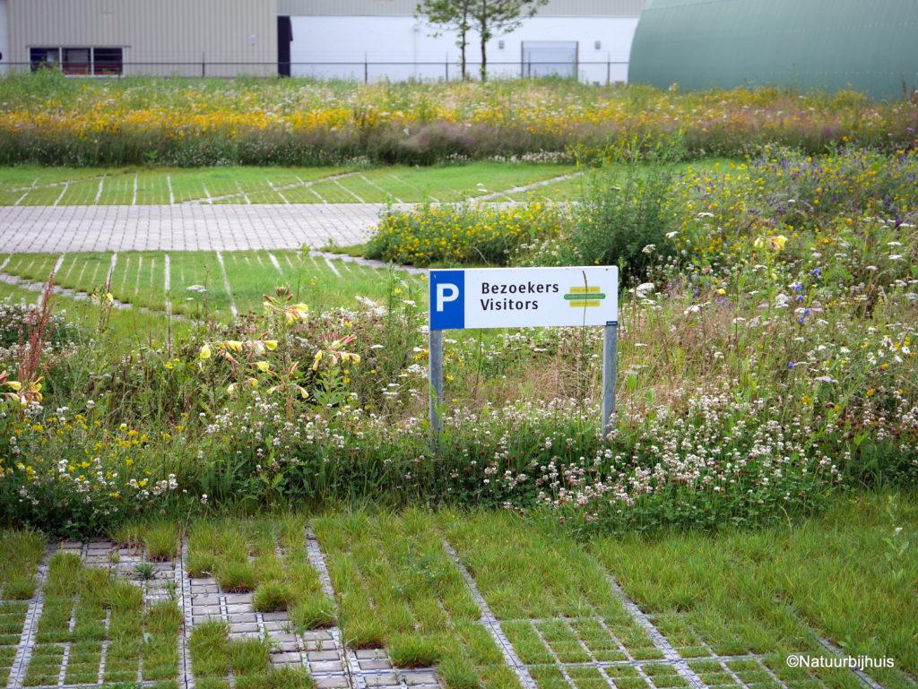 parkeerterrein ecologisch bedrijfstuin
