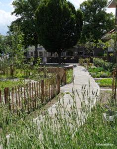 voorbeeld tuinontwerp gezamenlijke tuin CPO voormalig schoolplein