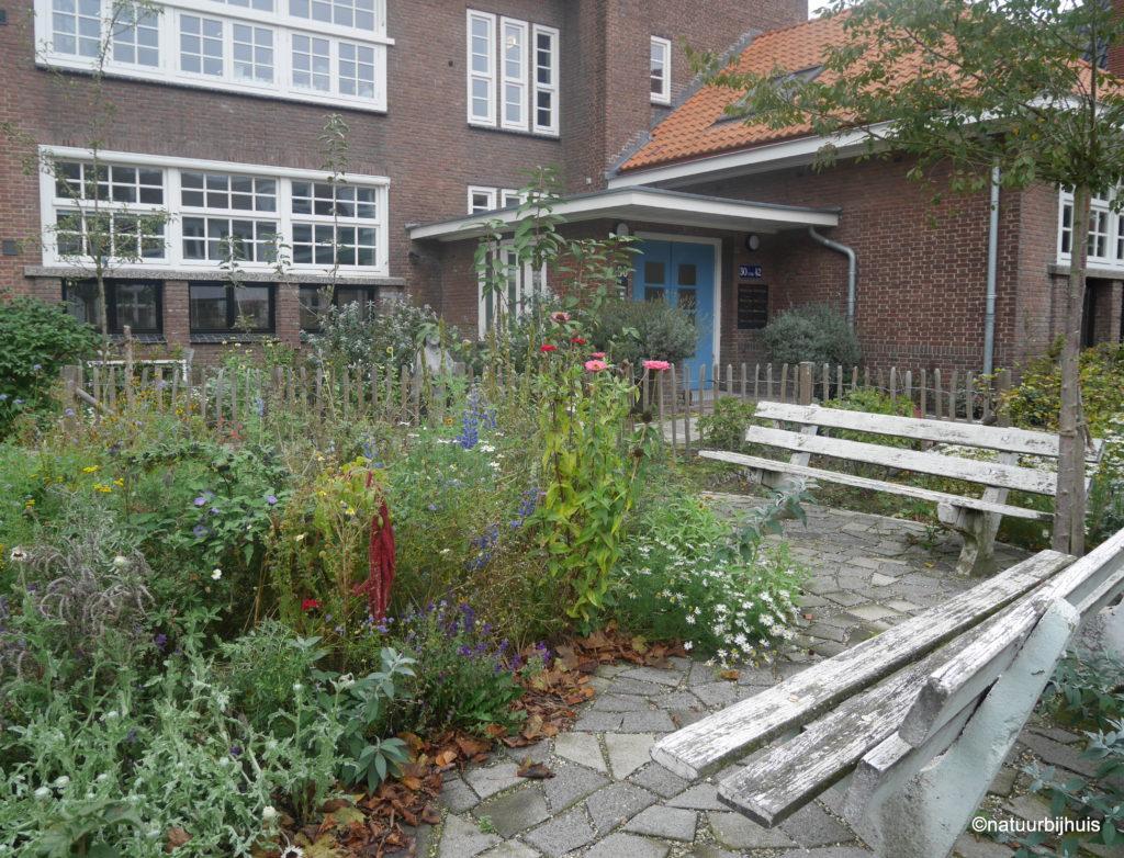gezamenlijke tuin schoolplein