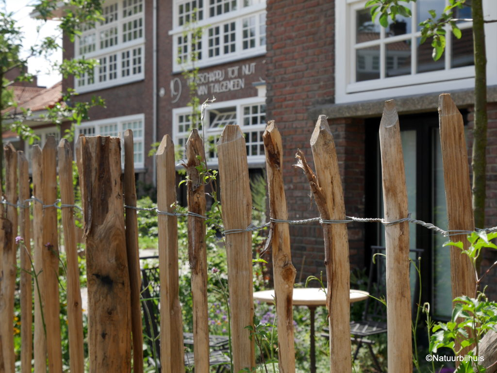 gezamenlijke tuin CPO voormalig schoolplein