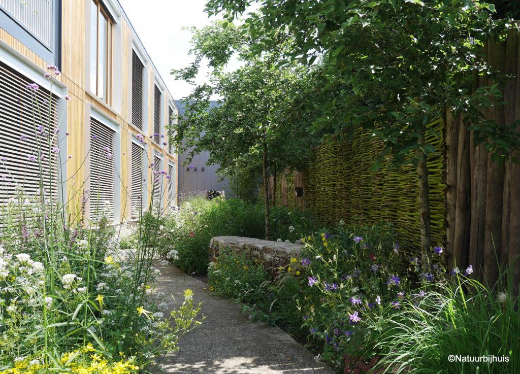 company garden bedrijfstuin gezonde werkomgeving