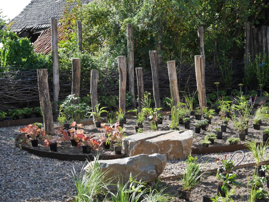 natuur-tuin natuur bij huis Limburg grauwacke