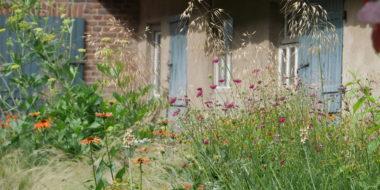 natuur bij huis natuurbeleving border beplanting